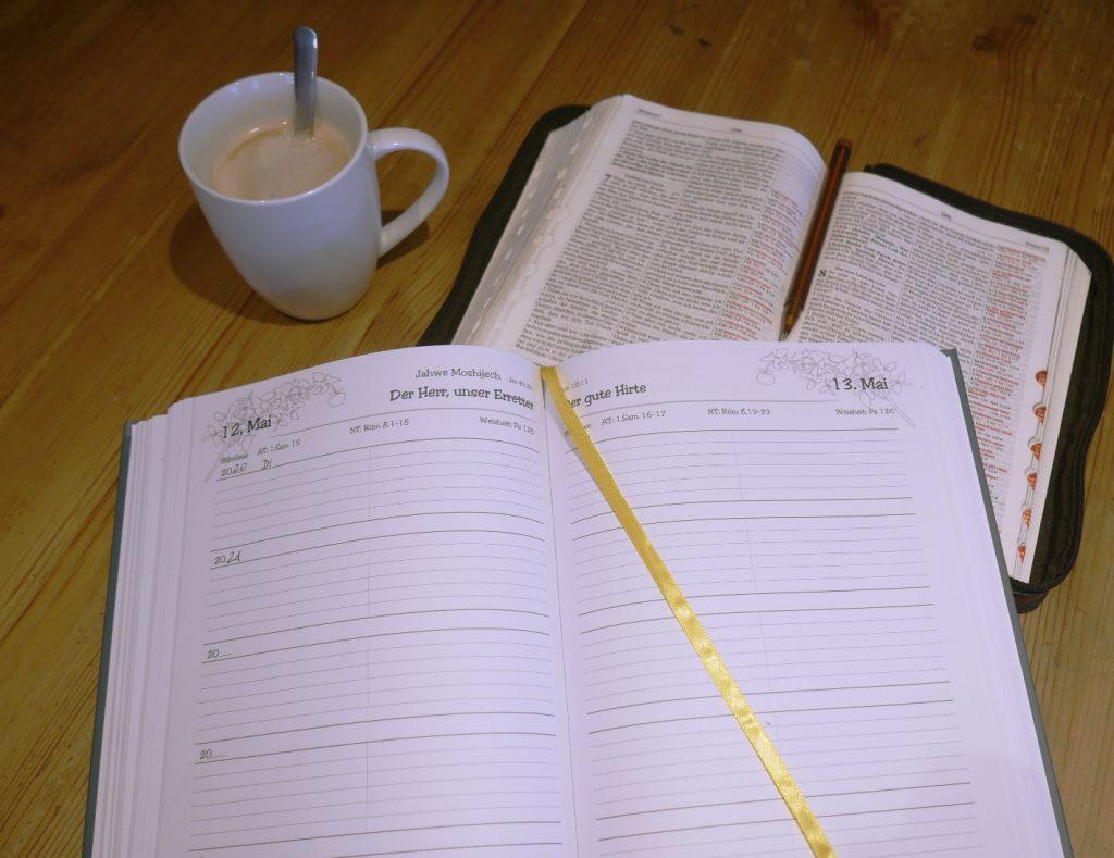 Mein Laaangzeit-Tagebuch mit Bibel